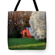 Country Gem Tote Bag