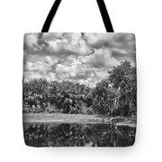 Country Lake 2 Tote Bag