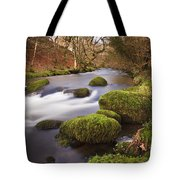 Country River Scene Wales Tote Bag