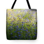 Country Road 3 Tote Bag