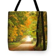 Country Road In Autumn Tote Bag by Terri Gostola