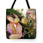Couroupita Guianensis - Cannonball Tree Flowers Tote Bag