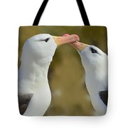 Court And Spark Tote Bag