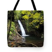 Courthouse Falls In North Carolina Tote Bag