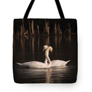 Courtship Painting Tote Bag