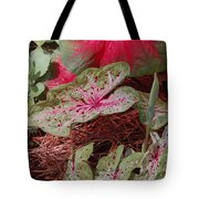 Courtyard Caladium Tote Bag