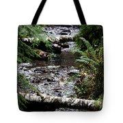 Covell Creek 1 Tote Bag