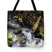 Covell Creek 4 Tote Bag