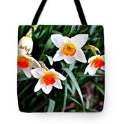 Covenant Daffodils Tote Bag