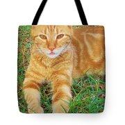 Covered In Orange Tote Bag