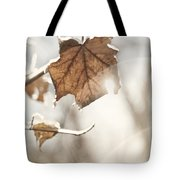 Covered With Ice Maple Leafe On A Sunny Day Tote Bag