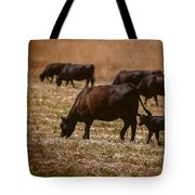 Cow And Calf Grazing Tote Bag