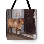 Cow At Church At Colva Tote Bag