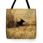 Cow Elk Tote Bag by Johanna Elik