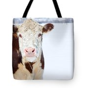 Cow - Fine Art Photography Print Tote Bag