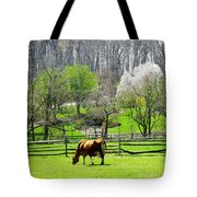 Cow Grazing In Pasture In Spring Tote Bag