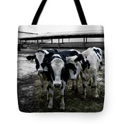 Cow Hugs Tote Bag