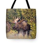 Cow Hunter Tote Bag