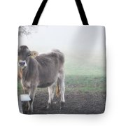 Cow In The Fog Tote Bag
