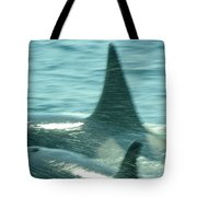 Cow Orca And Her Calf Tote Bag