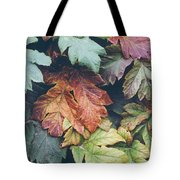 Cow Parsnip Leaves In The Fall Tote Bag