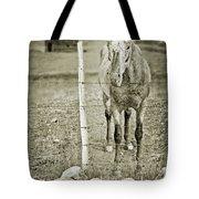 Cow Pony Tote Bag
