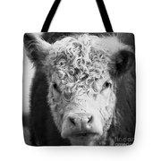 Cow Square Tote Bag