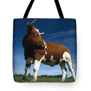 Cow Standing In Field Germany Tote Bag