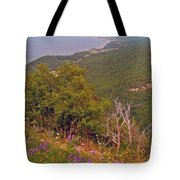 Cow Vetch In Cape Breton Highlands Np-ns Tote Bag