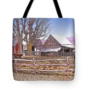 Cows At Jenne Farm Tote Bag