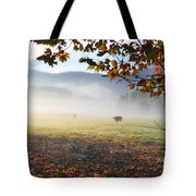 Cows In The Fog Tote Bag