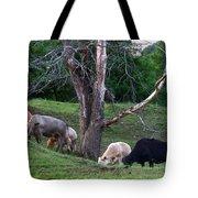 Cows Of Color Tote Bag