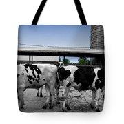 Cows Peek A Boo Tote Bag