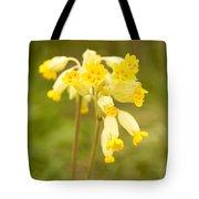Cowslip   Primula Veris Tote Bag