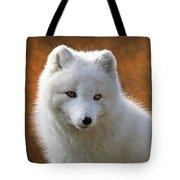 Coy Arctic Fox Tote Bag