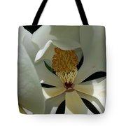 Coy Magnolia Tote Bag
