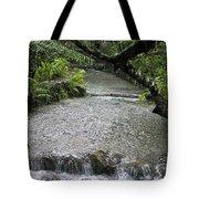Coyaba River Gardens 6 Tote Bag
