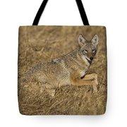 Coyote Running Tote Bag