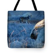 Coyote Wild Tote Bag
