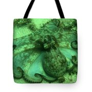 Cozumel Octopus Tote Bag