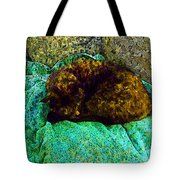 Cozy Calico Cat Tote Bag