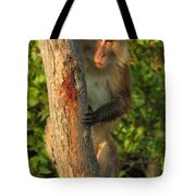 Crab Eating Macaque Tote Bag by Ramona Johnston