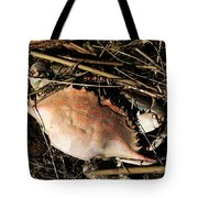 Crab Shell Tote Bag