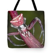 Crab Spider Hunting On Orchid Tote Bag