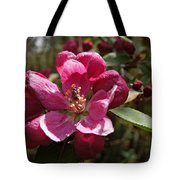 Crabapple Insect Tote Bag