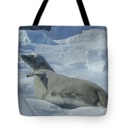 Crabeater Seal On An Iceberg Tote Bag