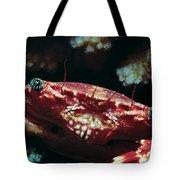 Crabs 1 Tote Bag