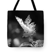 Cracked Wing Tote Bag