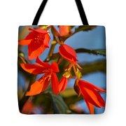 Crackling Fire Begonia Tote Bag