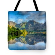 Craf Nant Lake Tote Bag by Adrian Evans